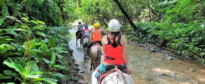 horseback riding in the rainforest tour