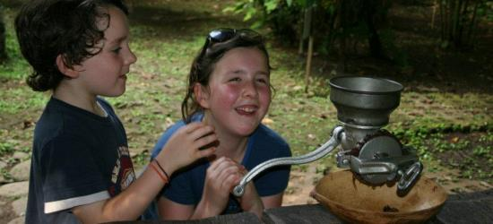 cocoa-farm-tour-in-costa-rica