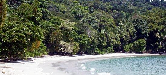 day-at-manuel-antonio-beach