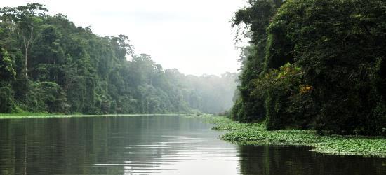 tortuguero-canals-rainforest-tour