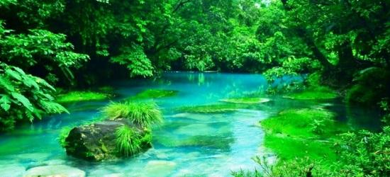 tour-to-rio-celeste-costa-rica