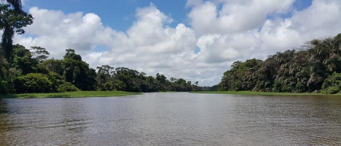 costa rica rainforest trip