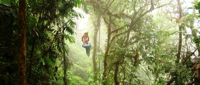 Zip Lining in the Cloud Forest
