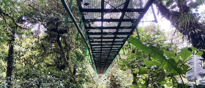 costa rica hanging bridges tours
