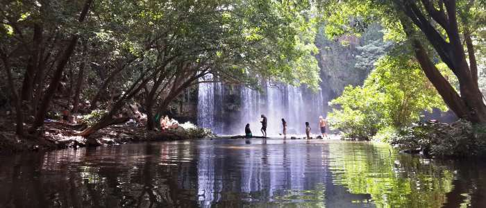 the guanacaste rainforest tour is a great option when traveling to costa rica