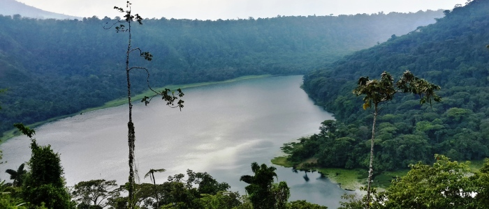 laguna de hule in the costa rica rainforest