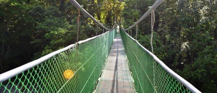 Amazing hanging bridge crossing the Sarapiqui River