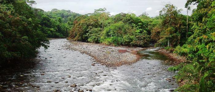 Sarapiqui River view from Tirimbina Biological Reserve