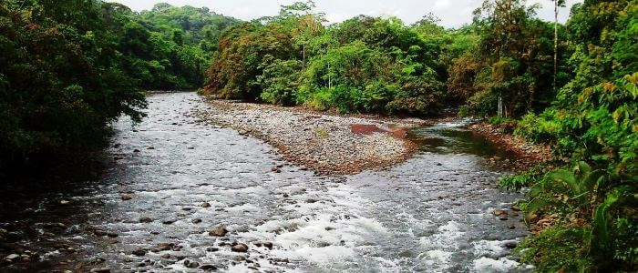 Beautiful River in Costa Rica