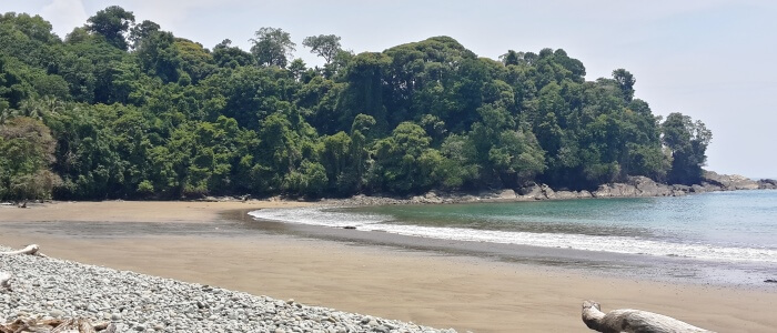 Uvita Beach now has a great an easy access from San Jose city, so you can visit it on your Costa Rica vacation