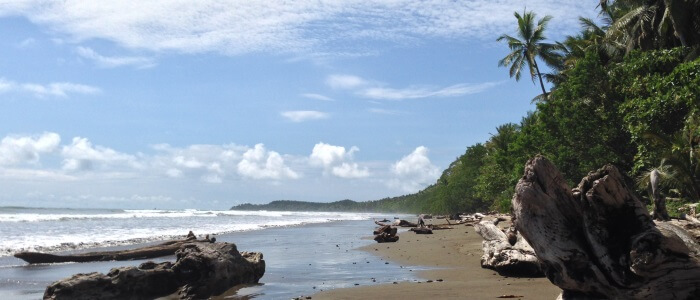 Visit Uvita Beach during your next trip to Costa Rica
