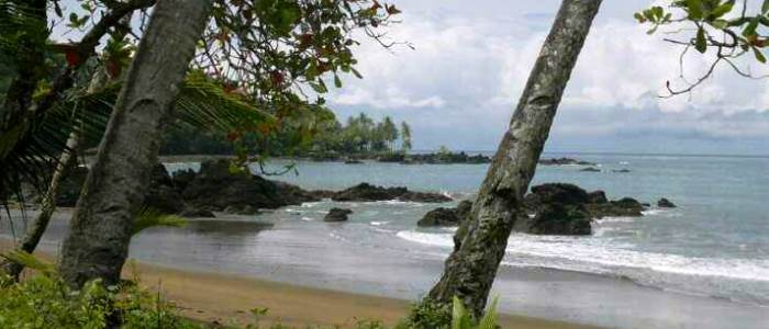 drake bay is one of the most beautiful and natural places in costa rica