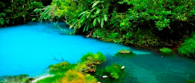 admire the amazing blue river