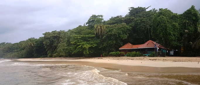 beautiful caribbean beach of costa rica