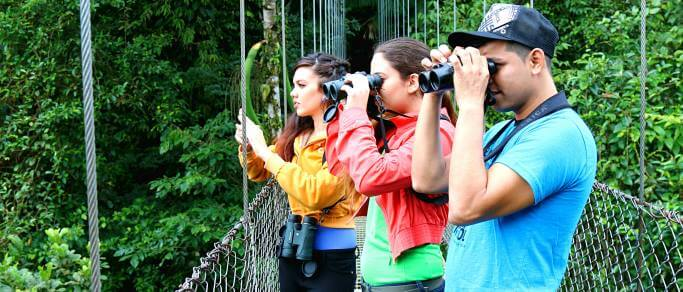 hike and sightseeing tour in arenal