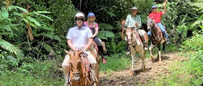 horseback riding in the rainforest