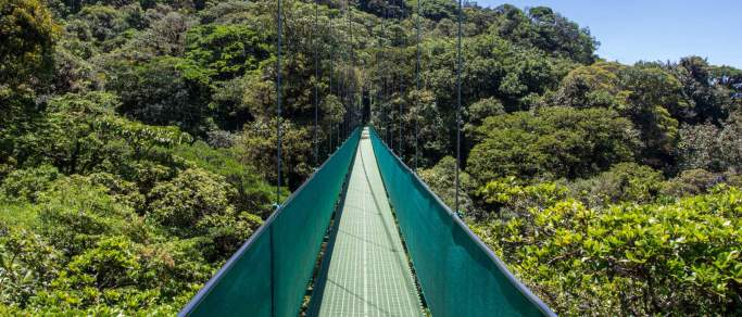 monteverde hanging bridges hike