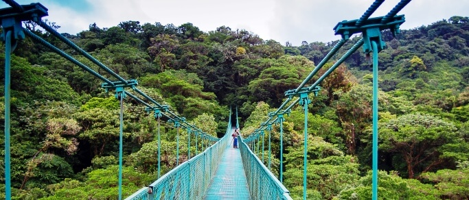 monteverde hanging bridges tour from san jose
