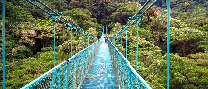 monteverde hanging bridges trip at selvatura park