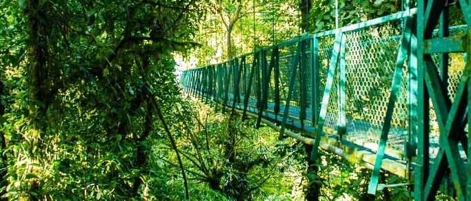 monteverde hanging bridges trip from santa elena