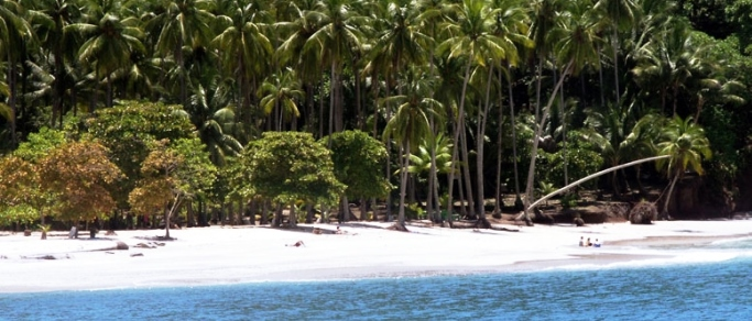 nice white sand beach in costa rica