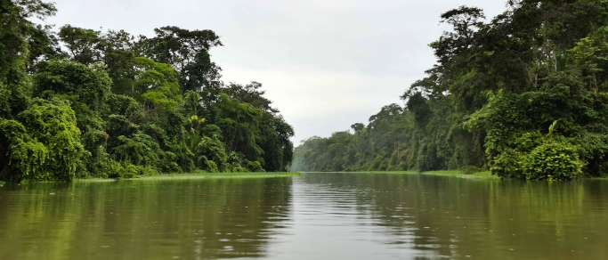 tortuguero canals day trip from san jose