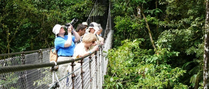 tour at the arenal hanging bridges