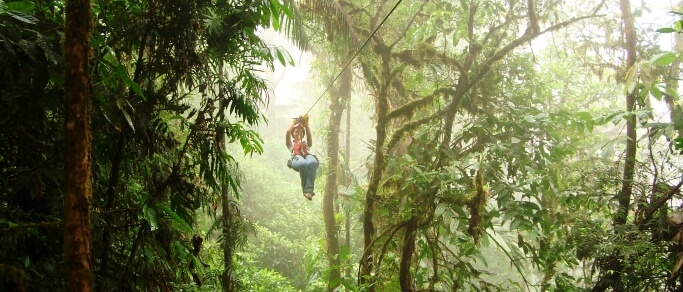 zip lining in the rainforest tour