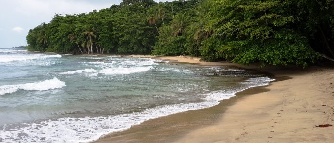 beautiful caribbean rainforest beach in costa rica