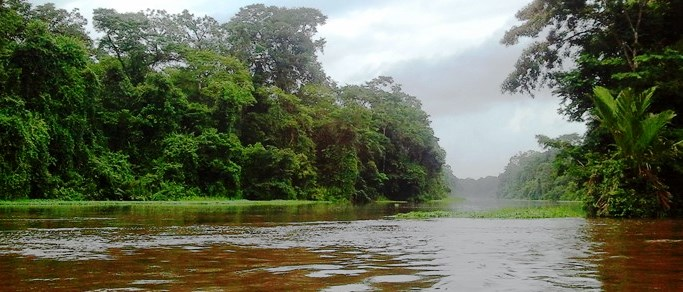 great tour to do when visiting tortuguero